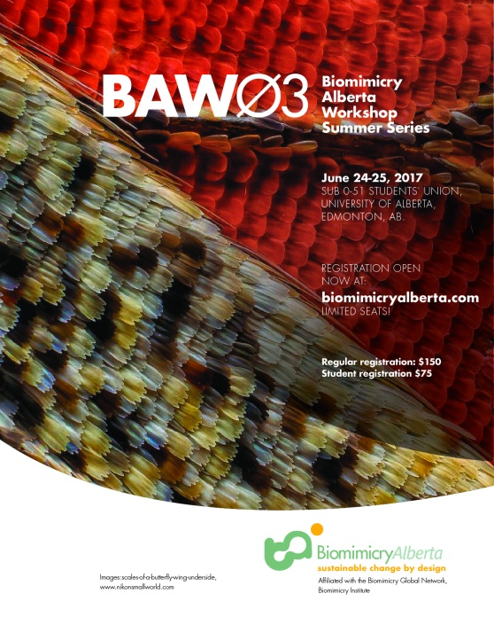 BAW03_poster2 copy-02